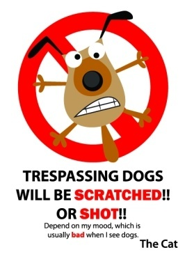 Trespassing dogs to be scratched or shot the cat aluminium sign